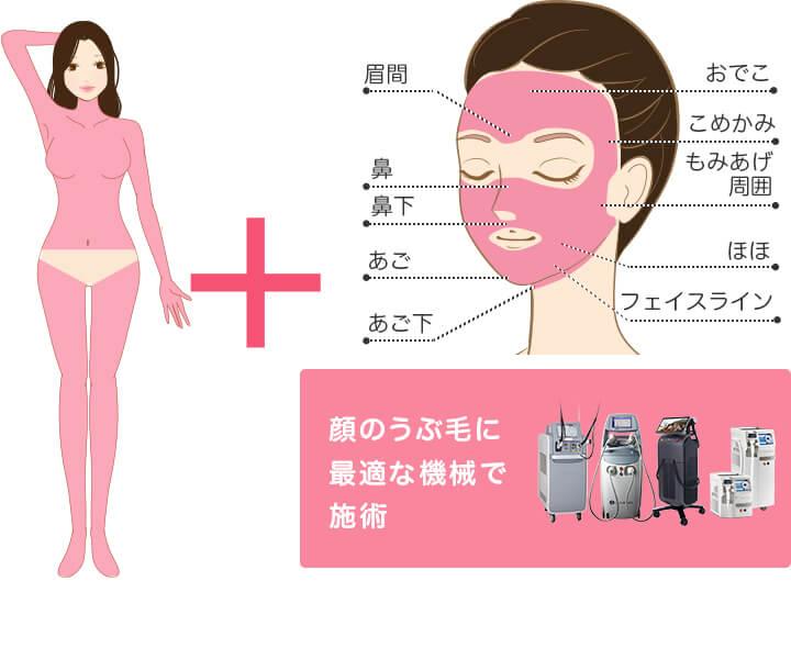 オールマシンセレクト全身+うなじ+顔 医療脱毛 4回完了プランの照射範囲 顔のうぶ毛に最適な機械で施術