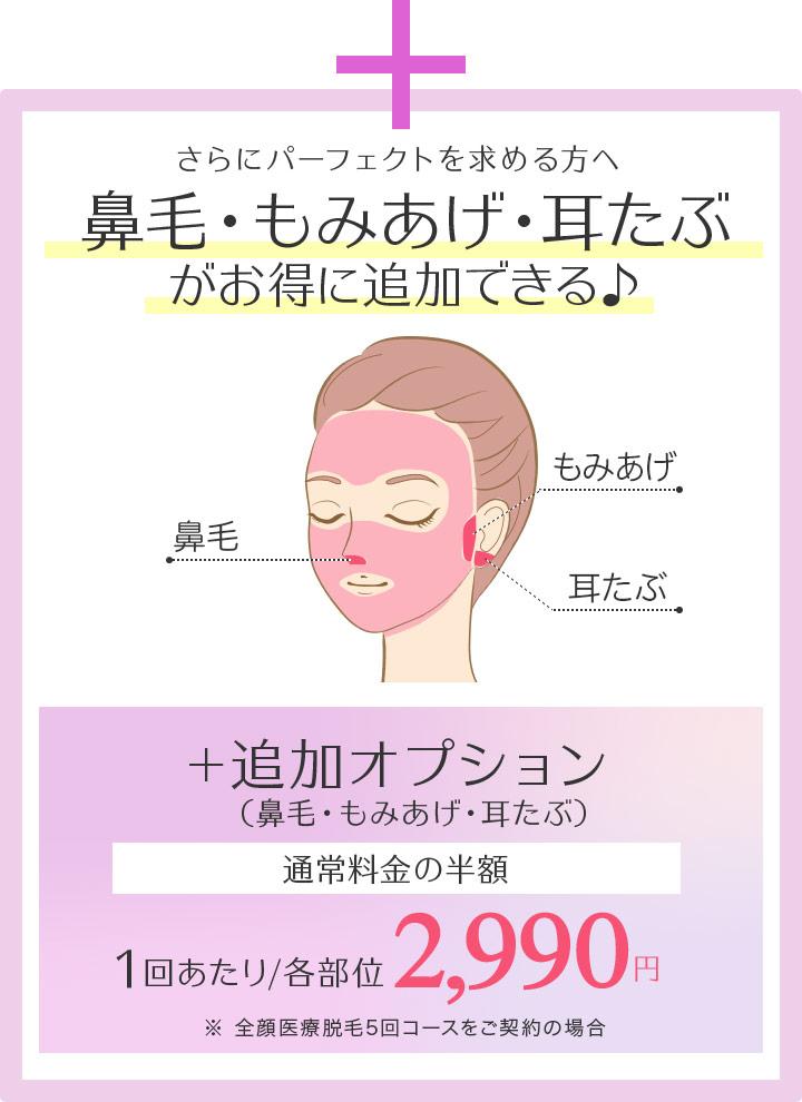 追加オプション(鼻毛・もみあげ・耳たぶ)通常料金の半額 1回あたり/各部位 2,990円